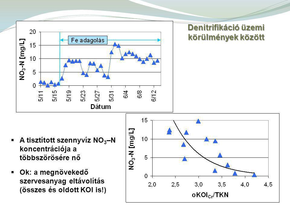  A tisztított szennyvíz NO 3 –N koncentrációja a többszörösére nő  Ok: a megnövekedő szervesanyag eltávolítás (összes és oldott KOI is!) Denitrifikáció üzemi körülmények között