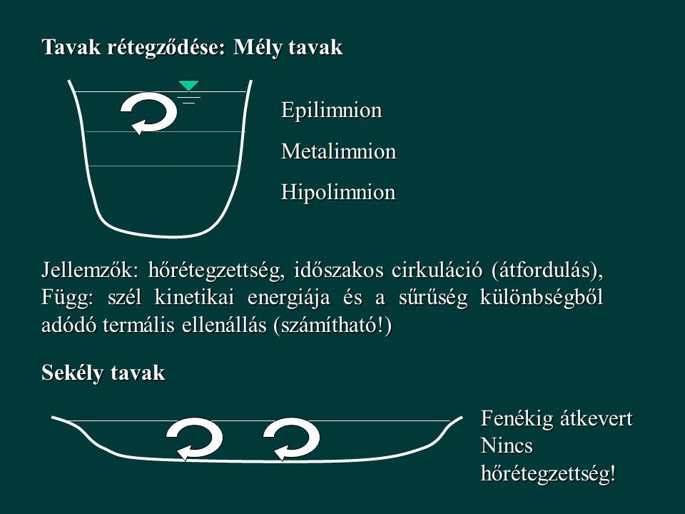 Tavak rétegződése: Mély tavak EpilimnionMetalimnionHipolimnion Jellemzők: hőrétegzettség, időszakos cirkuláció (átfordulás), Függ: szél kinetikai energiája és a sűrűség különbségből adódó termális ellenállás (számítható!) Sekély tavak Fenékig átkevert Nincs hőrétegzettség!