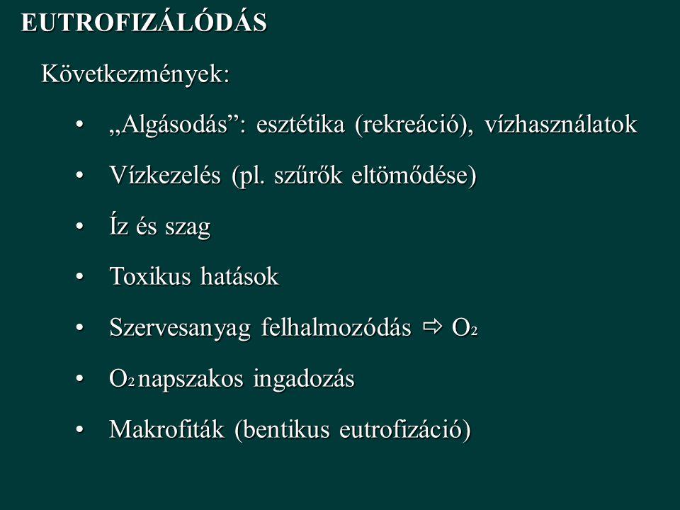 """EUTROFIZÁLÓDÁS EUTROFIZÁLÓDÁSKövetkezmények: """"Algásodás : esztétika (rekreáció), vízhasználatok""""Algásodás : esztétika (rekreáció), vízhasználatok Vízkezelés (pl."""