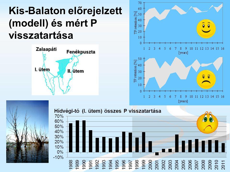 Kis-Balaton előrejelzett (modell) és mért P visszatartása