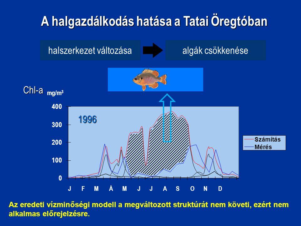 A halgazdálkodás hatása a Tatai Öregtóban halszerkezet változásaalgák csökkenése 0 100 200 300 400 Számítás MérésChl-a J F M Á M J J A S O N D mg/m 3 1996 Az eredeti vízminőségi modell a megváltozott struktúrát nem követi, ezért nem alkalmas előrejelzésre.