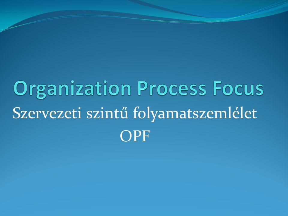 Szervezeti szintű folyamatszemlélet OPF