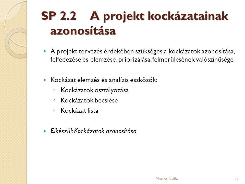 SP 2.2A projekt kockázatainak azonosítása A projekt tervezés érdekében szükséges a kockázatok azonosítása, felfedezése és elemzése, priorizálása, felm