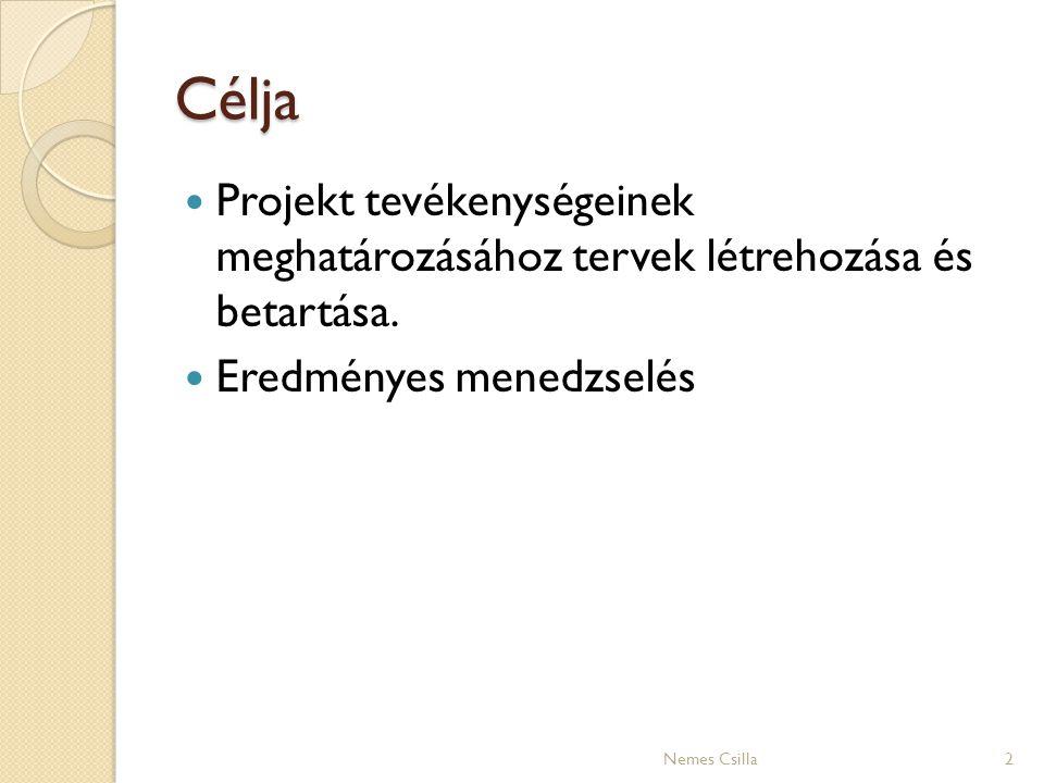 Célja Projekt tevékenységeinek meghatározásához tervek létrehozása és betartása. Eredményes menedzselés 2Nemes Csilla