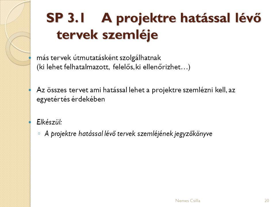 SP 3.1A projektre hatással lévő tervek szemléje más tervek útmutatásként szolgálhatnak (ki lehet felhatalmazott, felelős, ki ellenőrizhet…) Az összes