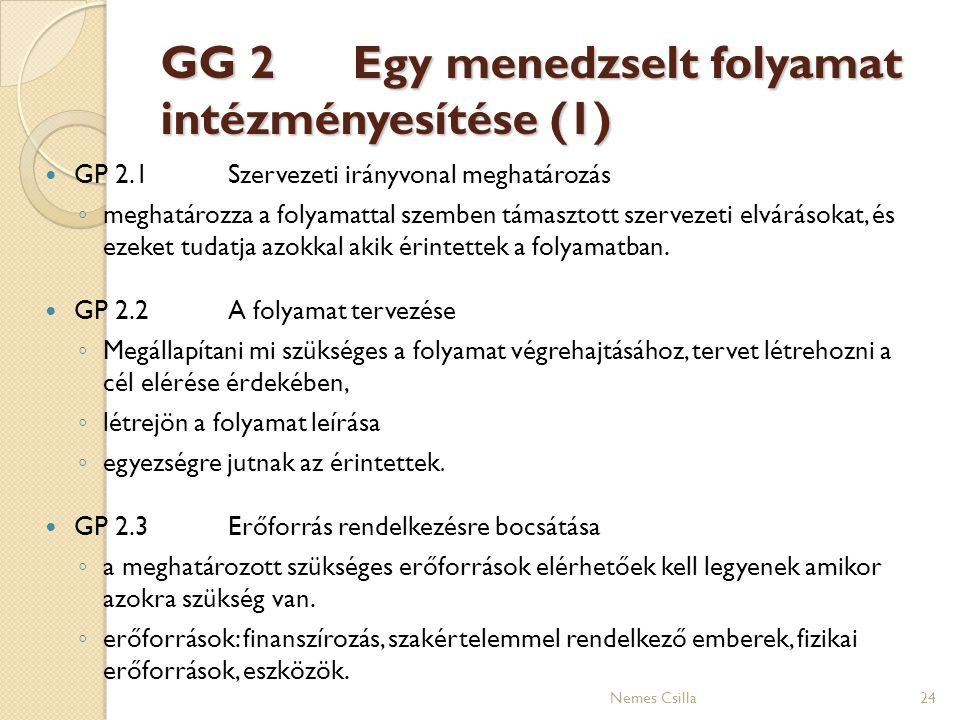 GG 2 Egy menedzselt folyamat intézményesítése (1) GP 2.1Szervezeti irányvonal meghatározás ◦ meghatározza a folyamattal szemben támasztott szervezeti
