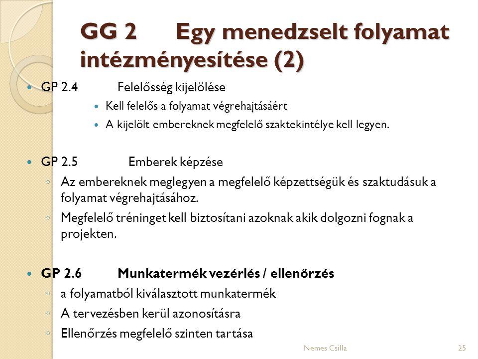 GG 2 Egy menedzselt folyamat intézményesítése (2) GP 2.4Felelősség kijelölése Kell felelős a folyamat végrehajtásáért A kijelölt embereknek megfelelő