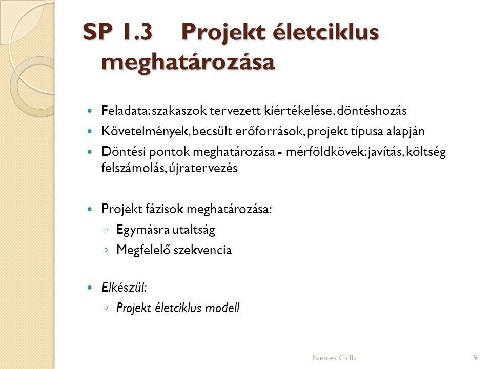 SP 1.3Projekt életciklus meghatározása Feladata: szakaszok tervezett kiértékelése, döntéshozás Követelmények, becsült erőforrások, projekt típusa alap