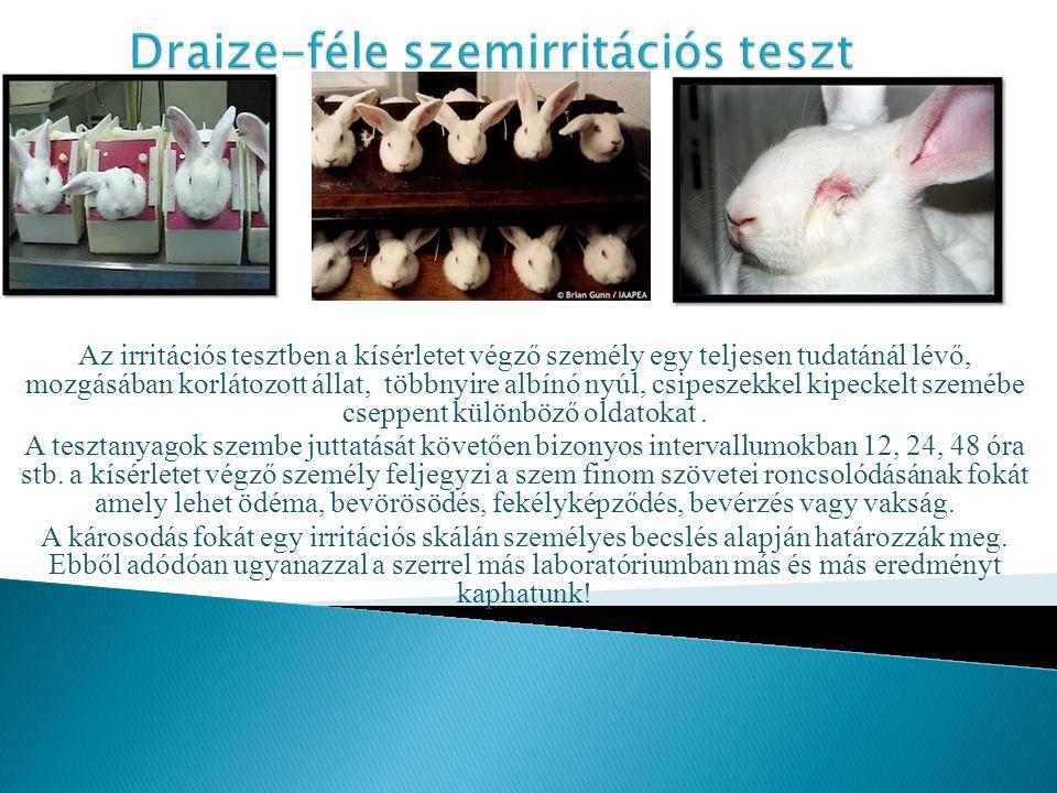 Az irritációs tesztben a kísérletet végző személy egy teljesen tudatánál lévő, mozgásában korlátozott állat, többnyire albínó nyúl, csipeszekkel kipeckelt szemébe cseppent különböző oldatokat.