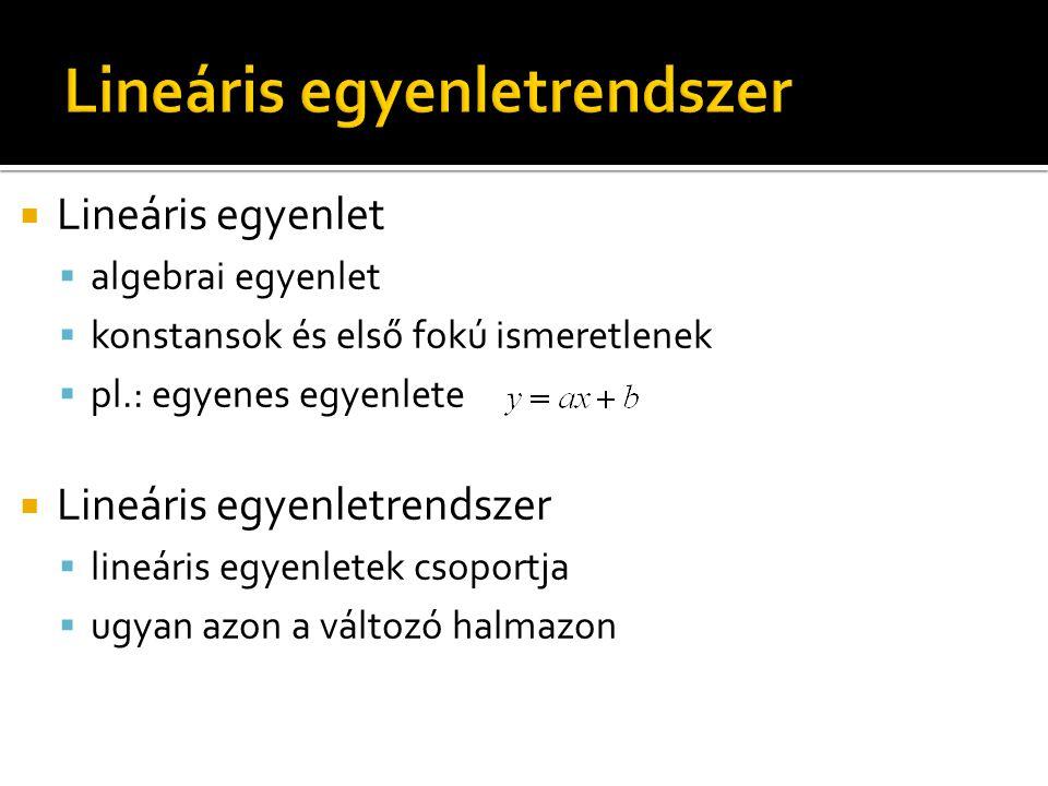  Lineáris egyenlet  algebrai egyenlet  konstansok és első fokú ismeretlenek  pl.: egyenes egyenlete  Lineáris egyenletrendszer  lineáris egyenletek csoportja  ugyan azon a változó halmazon
