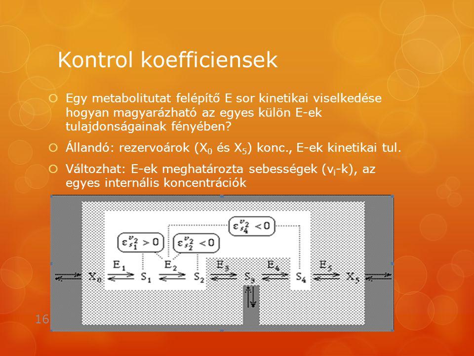 Kontrol koefficiensek  Egy metabolitutat felépítő E sor kinetikai viselkedése hogyan magyarázható az egyes külön E-ek tulajdonságainak fényében.