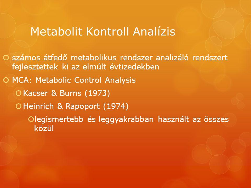 Metabolit Kontroll Analízis  számos átfedő metabolikus rendszer analizáló rendszert fejlesztettek ki az elmúlt évtizedekben  MCA: Metabolic Control Analysis  Kacser & Burns (1973)  Heinrich & Rapoport (1974)  legismertebb és leggyakrabban használt az összes közül