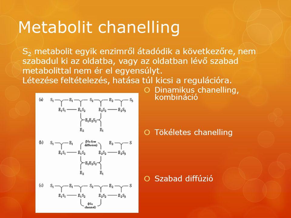 Metabolit chanelling  Dinamikus chanelling, kombináció  Tökéletes chanelling  Szabad diffúzió S 2 metabolit egyik enzimről átadódik a következőre, nem szabadul ki az oldatba, vagy az oldatban lévő szabad metabolittal nem ér el egyensúlyt.