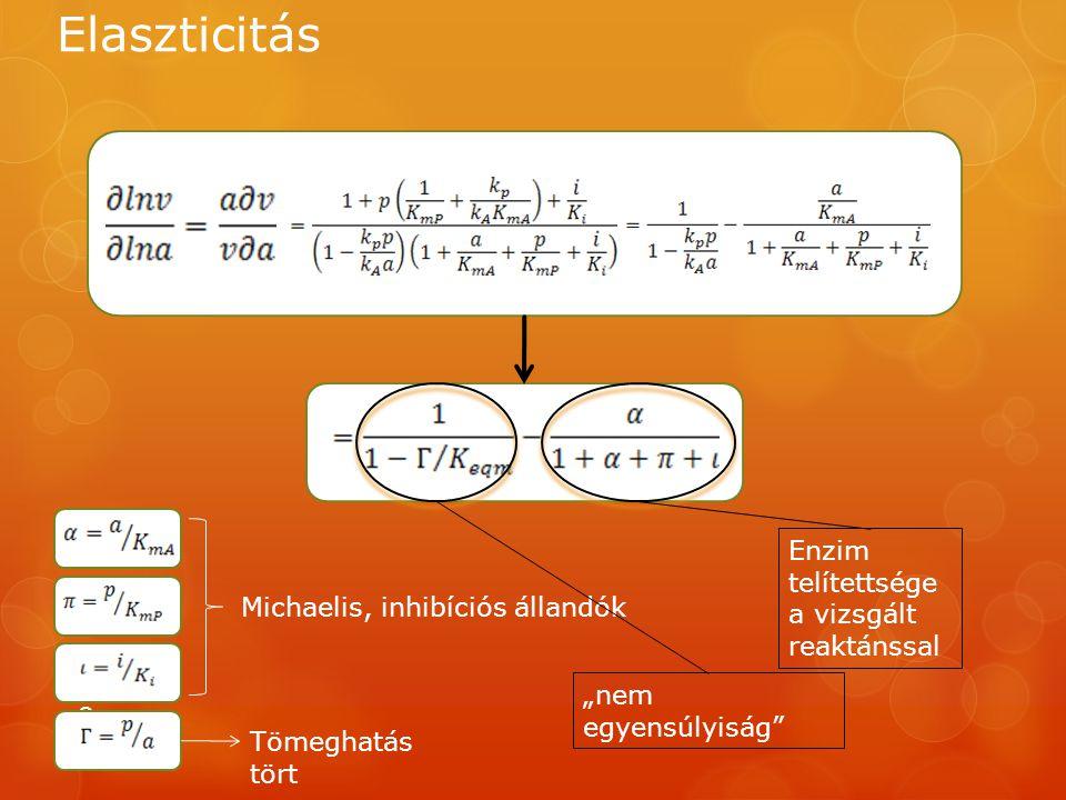 """Elaszticitás 9 Michaelis, inhibíciós állandók Tömeghatás tört """"nem egyensúlyiság"""" Enzim telítettsége a vizsgált reaktánssal"""