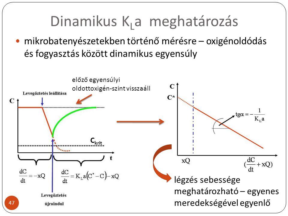 Dinamikus K L a meghatározás mikrobatenyészetekben történő mérésre – oxigénoldódás és fogyasztás között dinamikus egyensúly C krit előző egyensúlyi ol