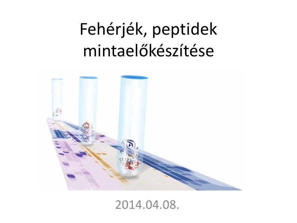 Fehérjék, peptidek mintaelőkészítése 2014.04.08.