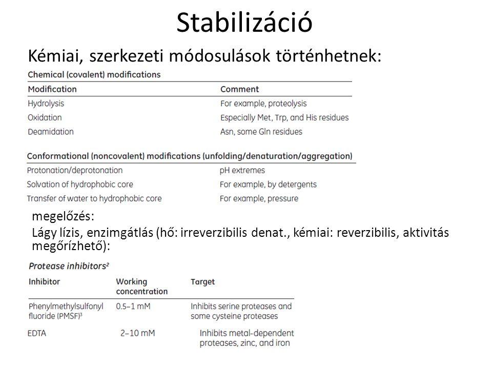 Stabilizáció Kémiai, szerkezeti módosulások történhetnek: megelőzés: Lágy lízis, enzimgátlás (hő: irreverzibilis denat., kémiai: reverzibilis, aktivit