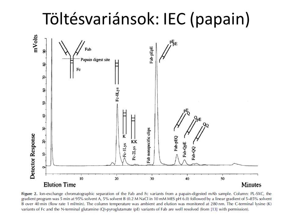 Töltésvariánsok: IEC (papain)