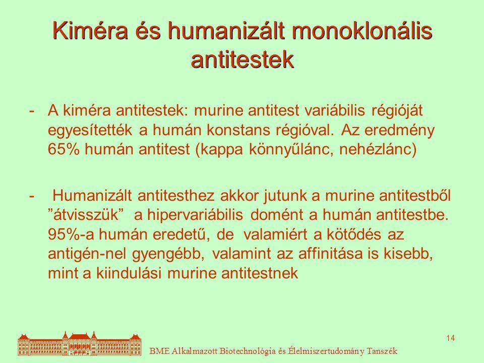14 Kiméra és humanizált monoklonális antitestek -A kiméra antitestek: murine antitest variábilis régióját egyesítették a humán konstans régióval.