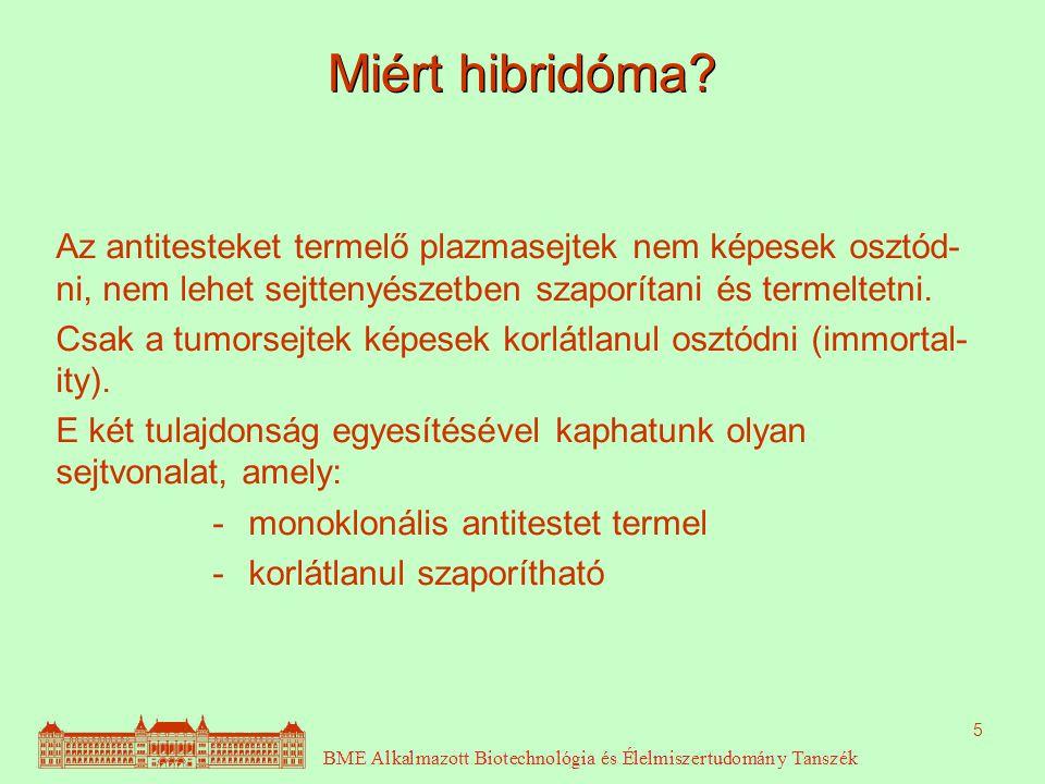 5 Miért hibridóma.