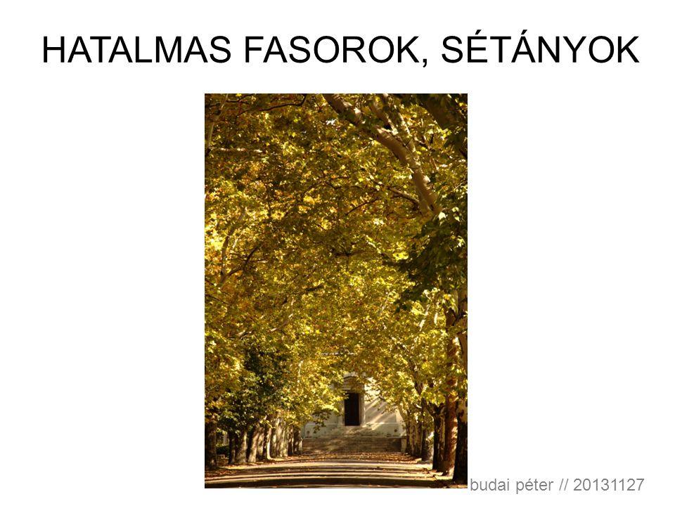 HATALMAS FASOROK, SÉTÁNYOK budai péter // 20131127