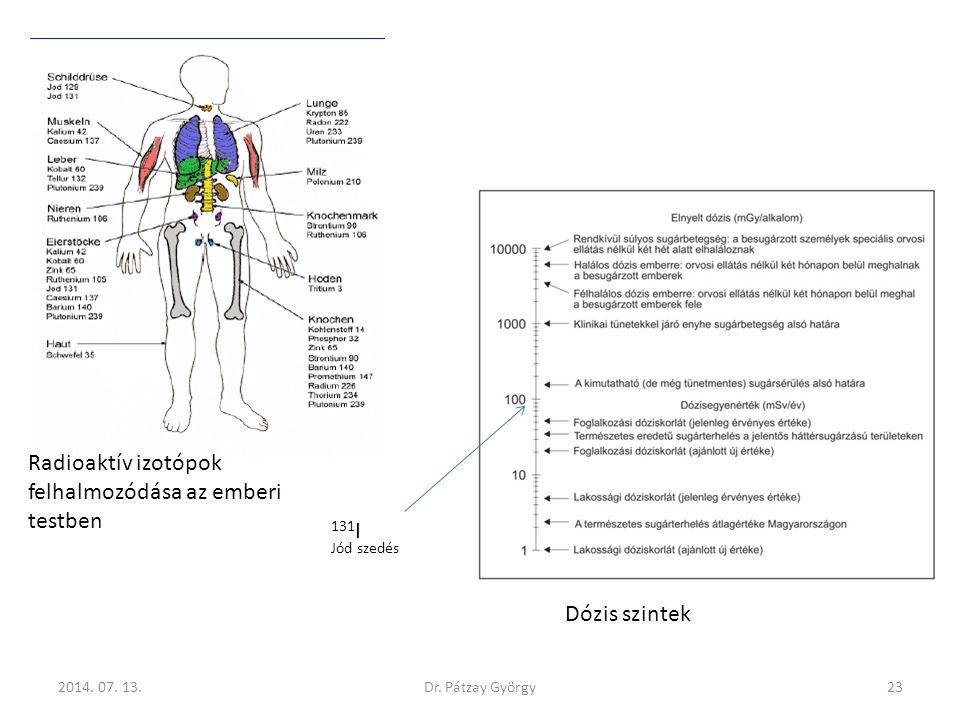 Radioaktív izotópok felhalmozódása az emberi testben 131 I Jód szedés 2014. 07. 13.23Dr. Pátzay György Dózis szintek