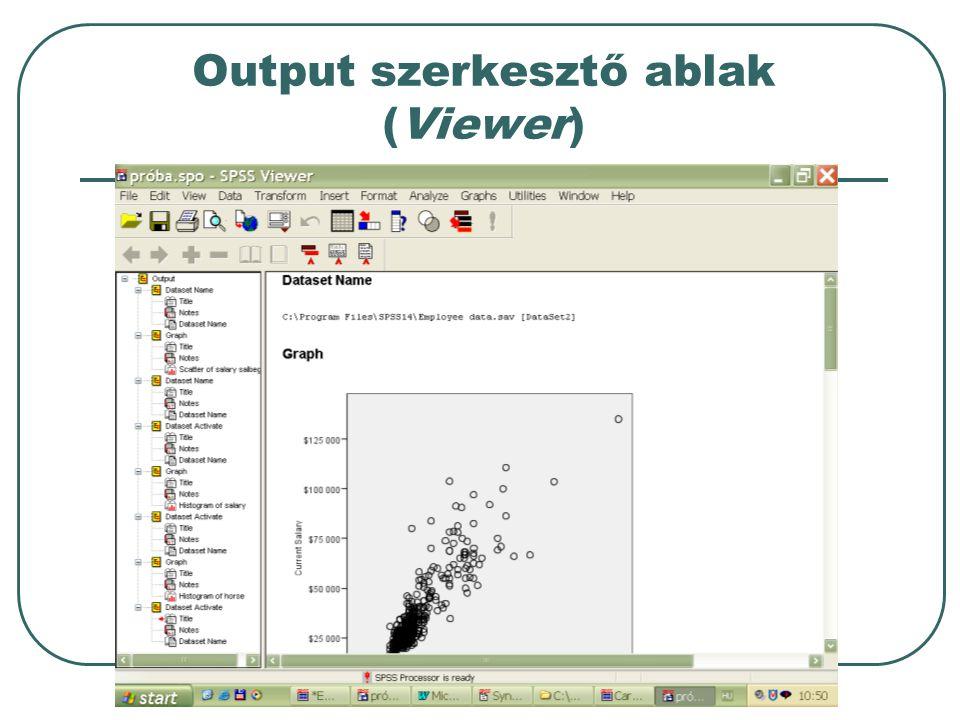 Output szerkesztő ablak (Viewer)