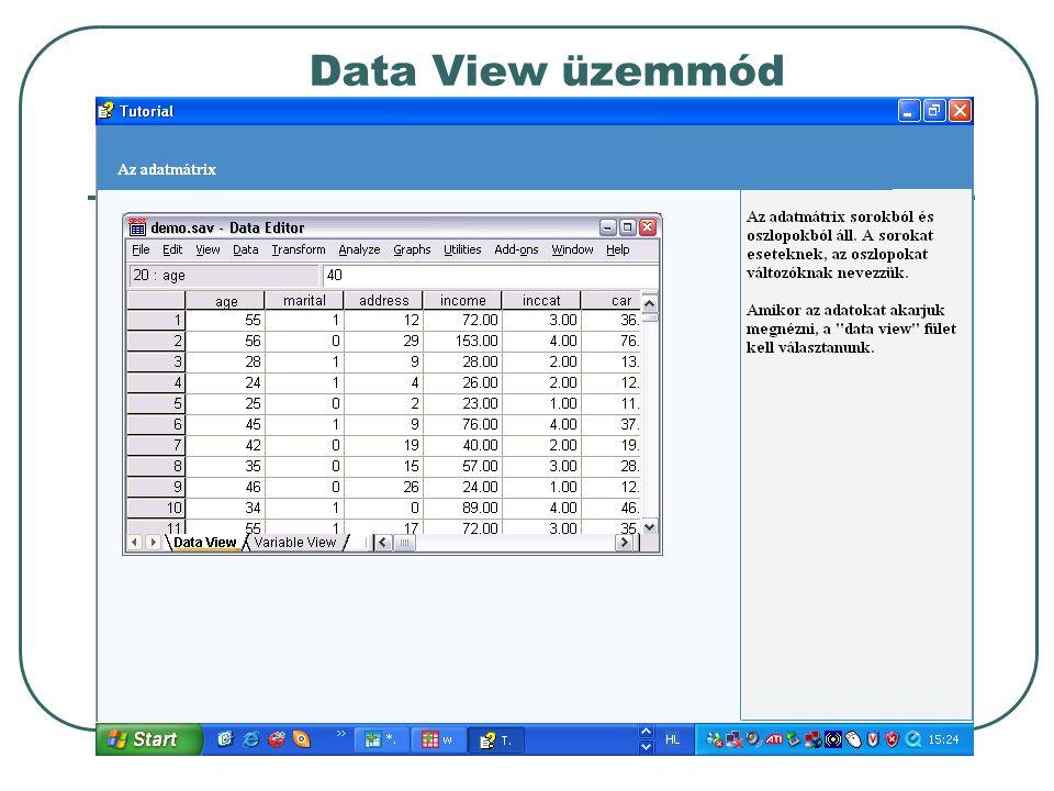 Data View üzemmód
