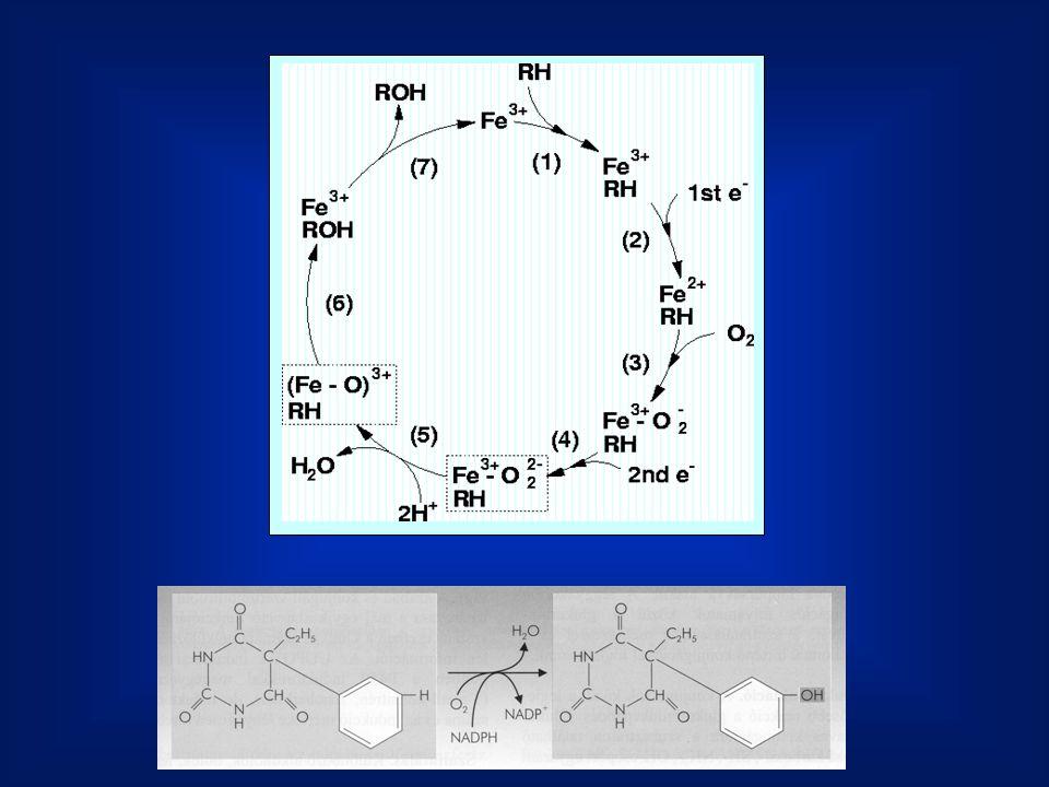 A szinapszisokban található közvetítő vegyületeket ingerületátvivő anyagoknak nevezzük.