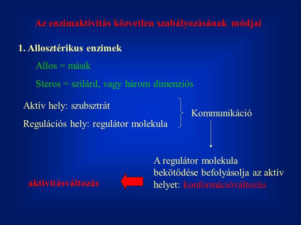 Az enzimaktivitás közvetlen szabályozásának módjai 1. Allosztérikus enzimek Allos = másik Steros = szilárd, vagy három dimenziós Aktív hely: szubsztrá