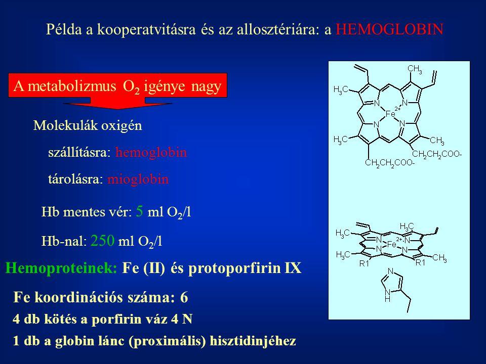 Példa a kooperatvitásra és az allosztériára: a HEMOGLOBIN A metabolizmus O 2 igénye nagy Molekulák oxigén szállításra: hemoglobin tárolásra: mioglobin
