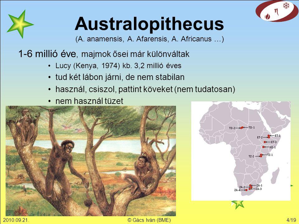 2010.09.21.© Gács Iván (BME)4/19 1-6 millió éve, majmok ősei már különváltak Lucy (Kenya, 1974) kb. 3,2 millió éves tud két lábon járni, de nem stabil