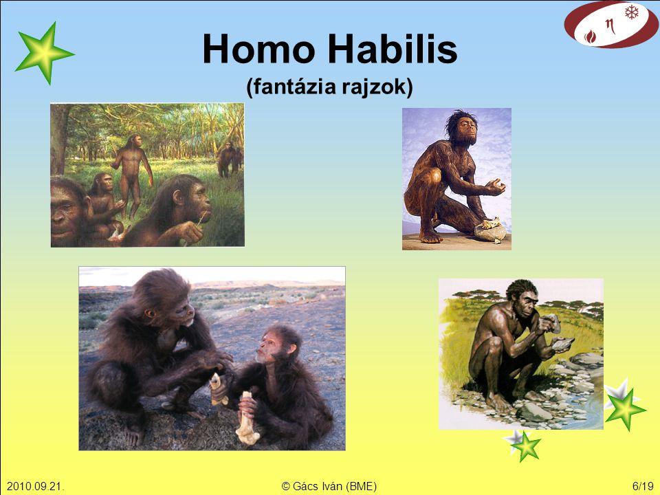 2010.09.21.© Gács Iván (BME)6/19 Homo Habilis (fantázia rajzok)