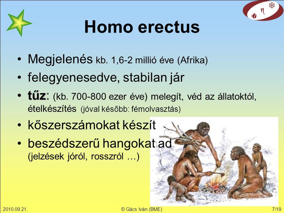 2010.09.21.© Gács Iván (BME)7/19 Homo erectus Megjelenés kb. 1,6-2 millió éve (Afrika) felegyenesedve, stabilan jár tűztűz: (kb. 700-800 ezer éve) mel