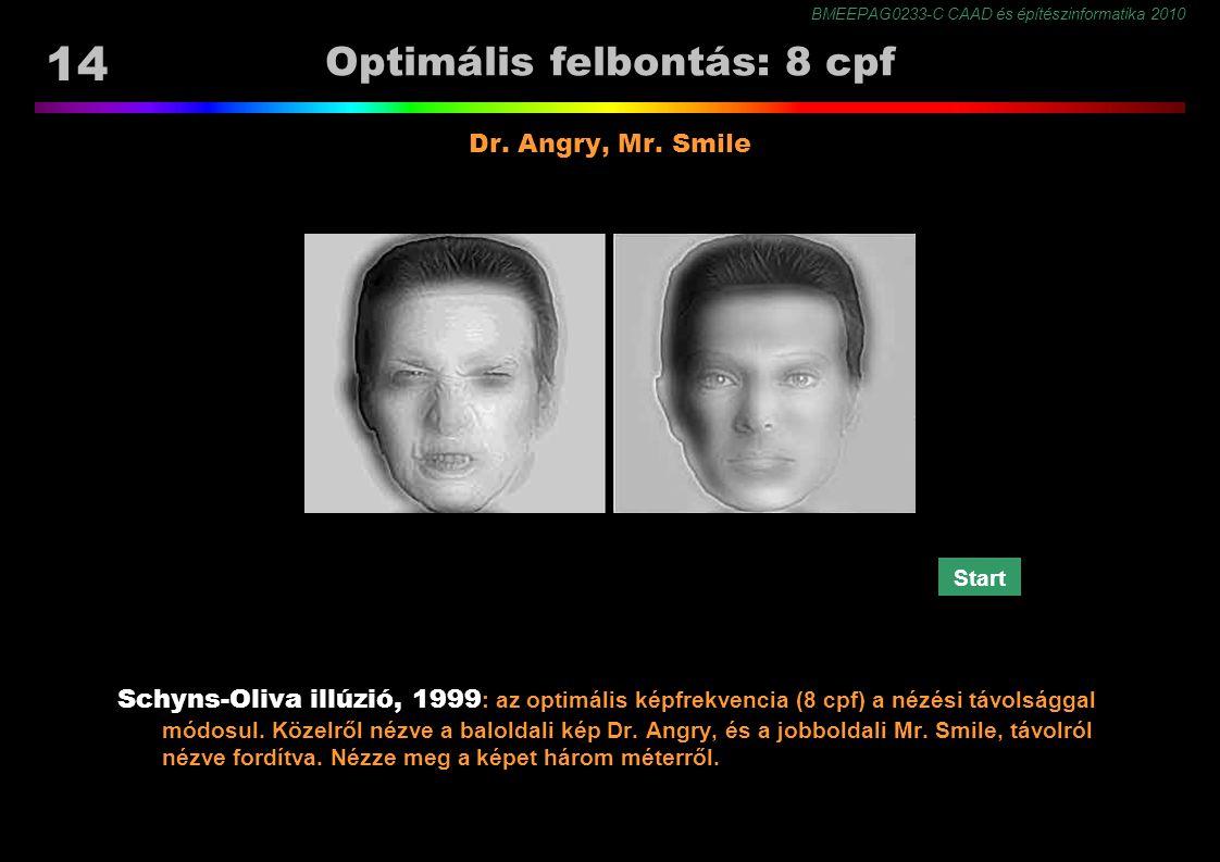 BMEEPAG0233-C CAAD és építészinformatika 2010 14 Optimális felbontás: 8 cpf Schyns-Oliva illúzió, 1999 : az optimális képfrekvencia (8 cpf) a nézési távolsággal módosul.