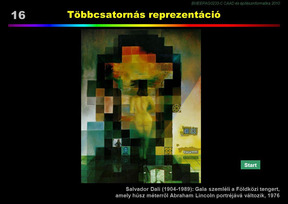 BMEEPAG0233-C CAAD és építészinformatika 2010 16 Többcsatornás reprezentáció Salvador Dali (1904-1989): Gala szemléli a Földközi tengert, amely húsz méterről Abraham Lincoln portréjává változik, 1976 Start