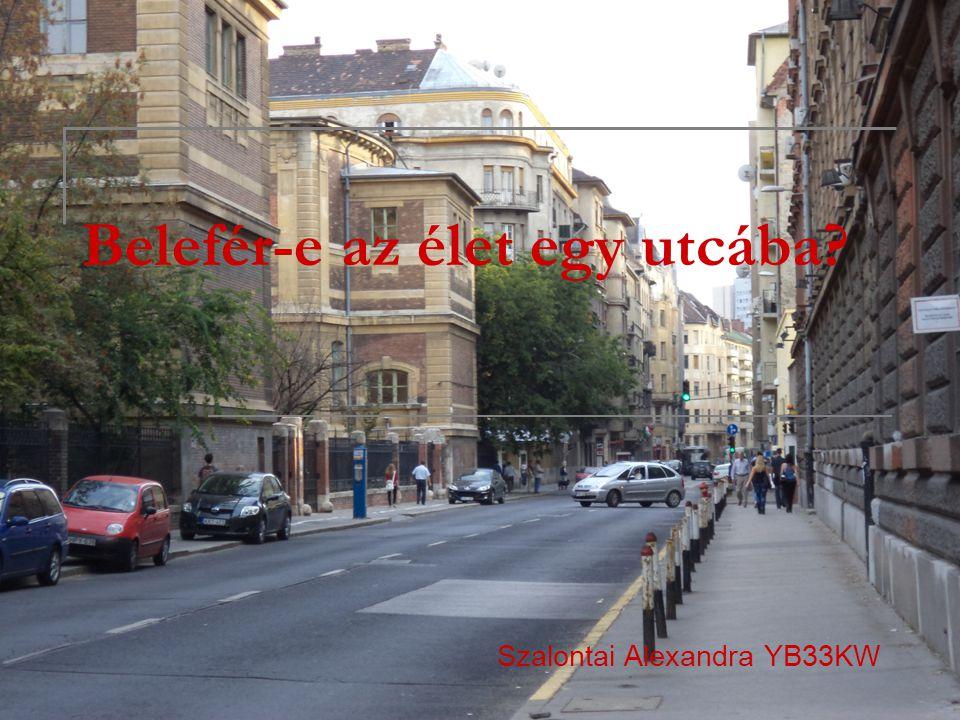 Belefér-e az élet egy utcába? Szalontai Alexandra YB33KW