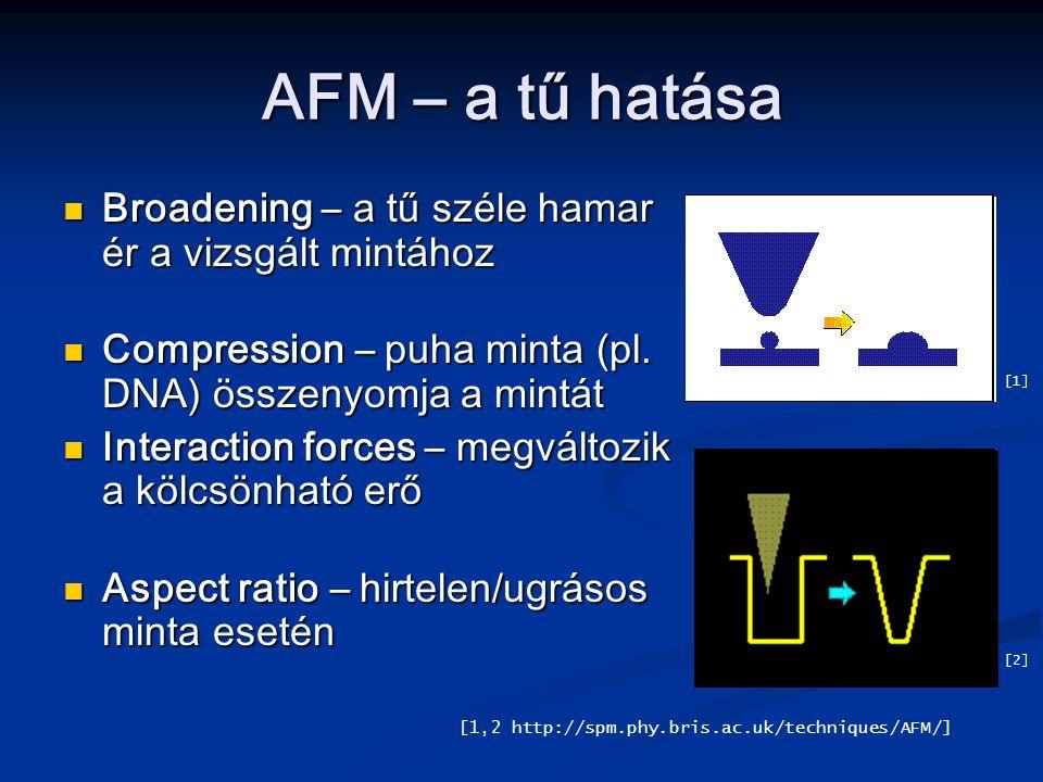 AFM – a tű hatása Broadening – a tű széle hamar ér a vizsgált mintához Broadening – a tű széle hamar ér a vizsgált mintához Compression – puha minta (pl.