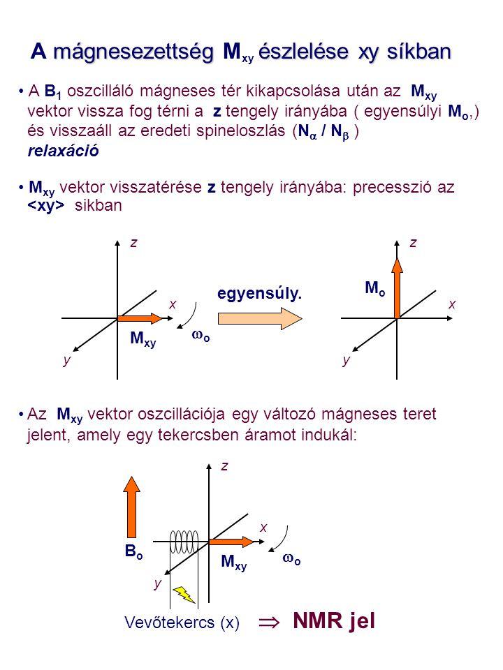 mágnesezettség észlelése xy síkban A mágnesezettség M xy észlelése xy síkban A B 1 oszcilláló mágneses tér kikapcsolása után az M xy vektor vissza fog