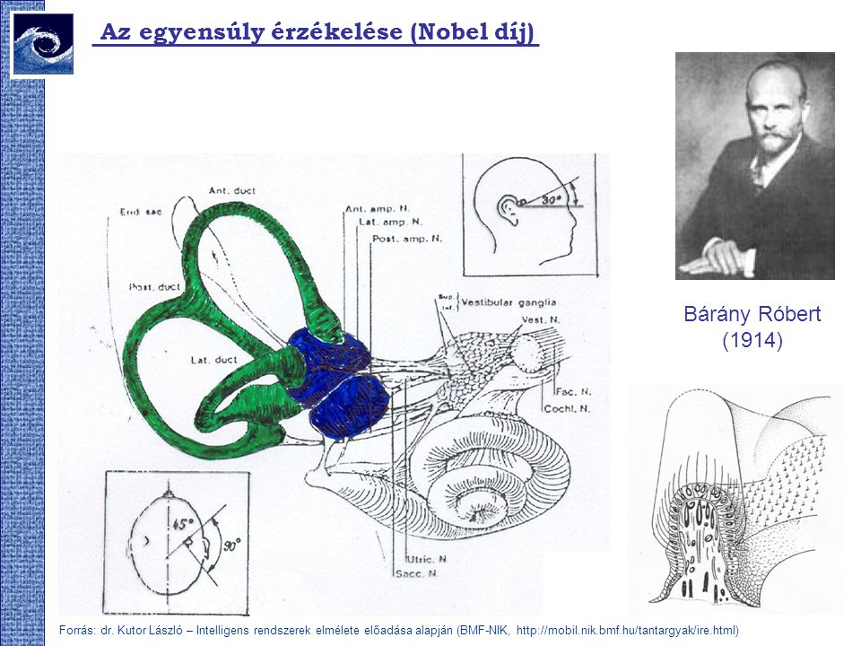 Az egyensúly érzékelése (Nobel díj) Bárány Róbert (1914) Forrás: dr. Kutor László – Intelligens rendszerek elmélete előadása alapján (BMF-NIK, http://