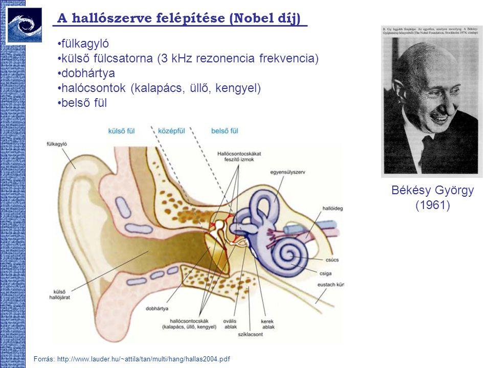 A hallószerve felépítése (Nobel díj) fülkagyló külső fülcsatorna (3 kHz rezonencia frekvencia) dobhártya halócsontok (kalapács, üllő, kengyel) belső fül Békésy György (1961) Forrás: http://www.lauder.hu/~attila/tan/multi/hang/hallas2004.pdf