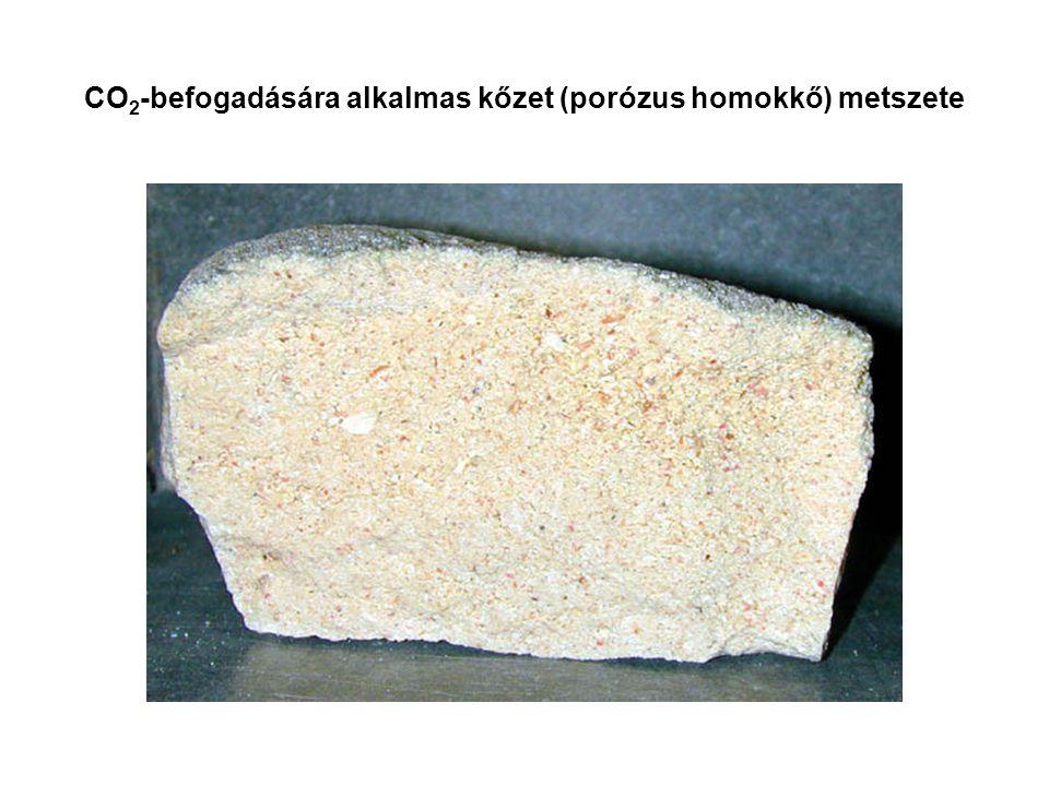 CO 2 -befogadására alkalmas kőzet (porózus homokkő) metszete