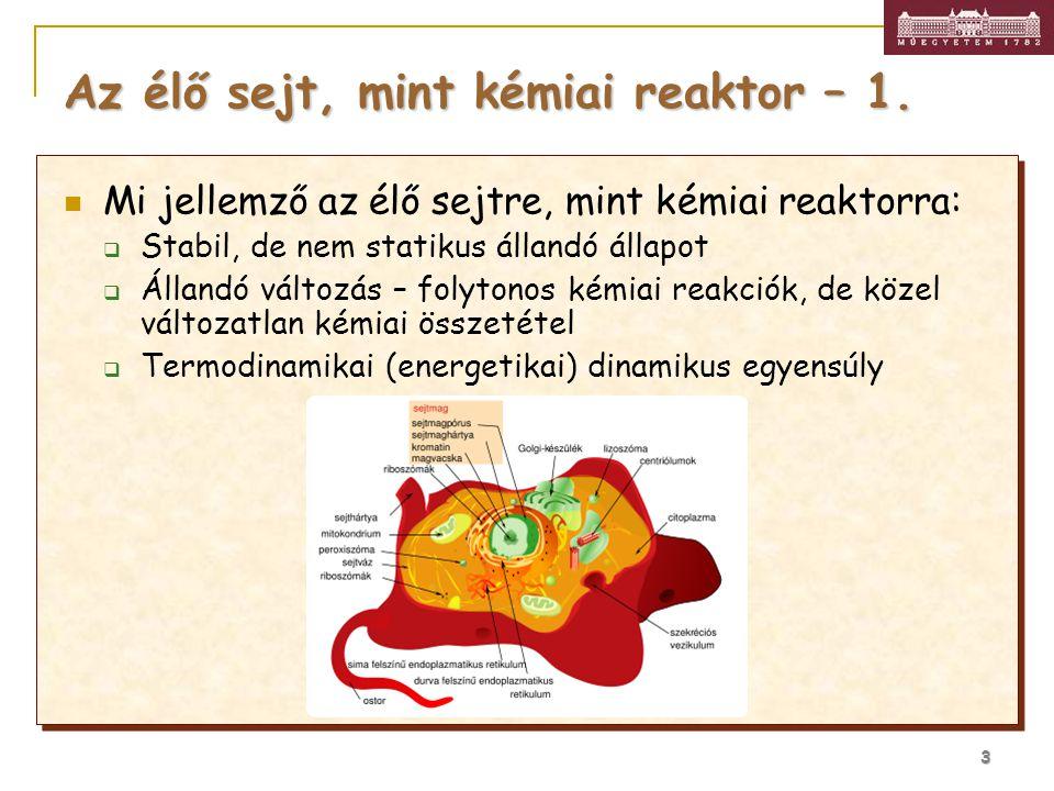 3 Az élő sejt, mint kémiai reaktor – 1. Mi jellemző az élő sejtre, mint kémiai reaktorra:  Stabil, de nem statikus állandó állapot  Állandó változás