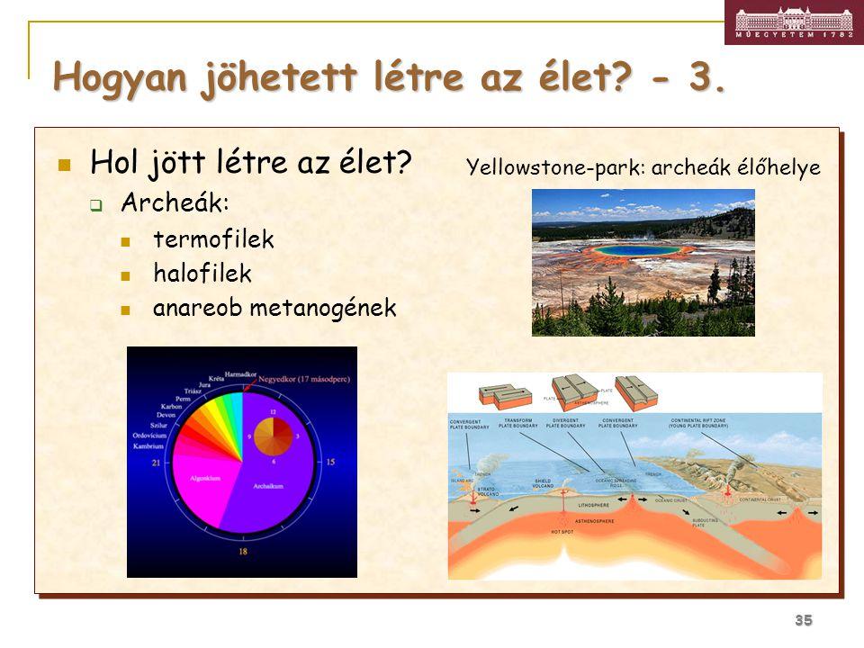 35 Hogyan jöhetett létre az élet? - 3. Yellowstone-park: archeák élőhelye Hol jött létre az élet?  Archeák: termofilek halofilek anareob metanogének