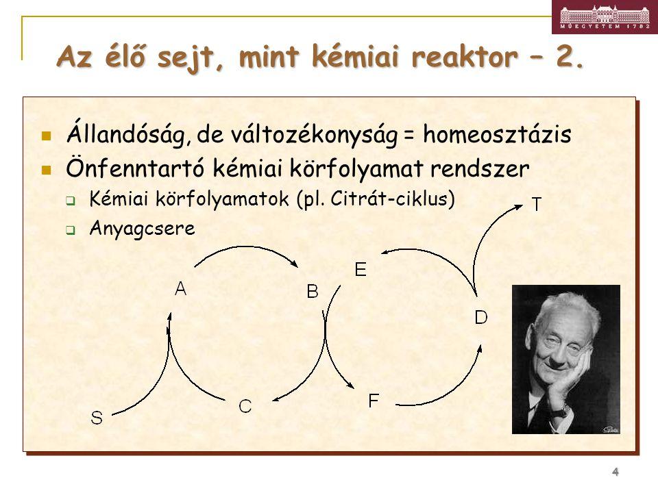 4 Állandóság, de változékonyság = homeosztázis Önfenntartó kémiai körfolyamat rendszer  Kémiai körfolyamatok (pl. Citrát-ciklus)  Anyagcsere Az élő