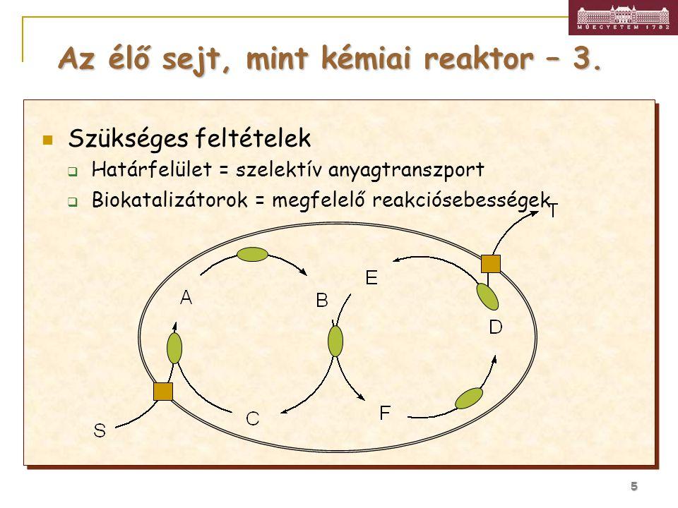 5 Szükséges feltételek  Határfelület = szelektív anyagtranszport  Biokatalizátorok = megfelelő reakciósebességek Az élő sejt, mint kémiai reaktor –