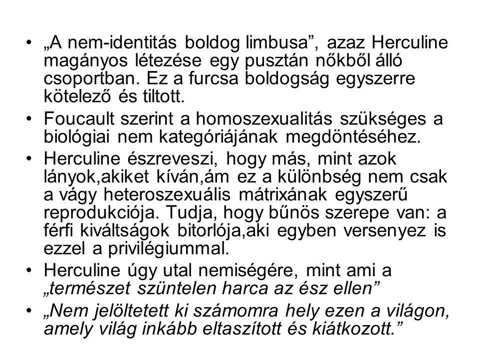 """""""A nem-identitás boldog limbusa"""", azaz Herculine magányos létezése egy pusztán nőkből álló csoportban. Ez a furcsa boldogság egyszerre kötelező és til"""