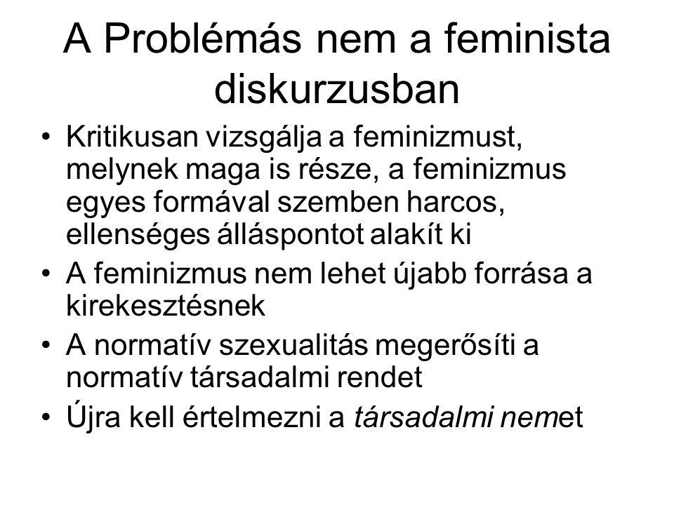 A Problémás nem a feminista diskurzusban Kritikusan vizsgálja a feminizmust, melynek maga is része, a feminizmus egyes formával szemben harcos, ellens