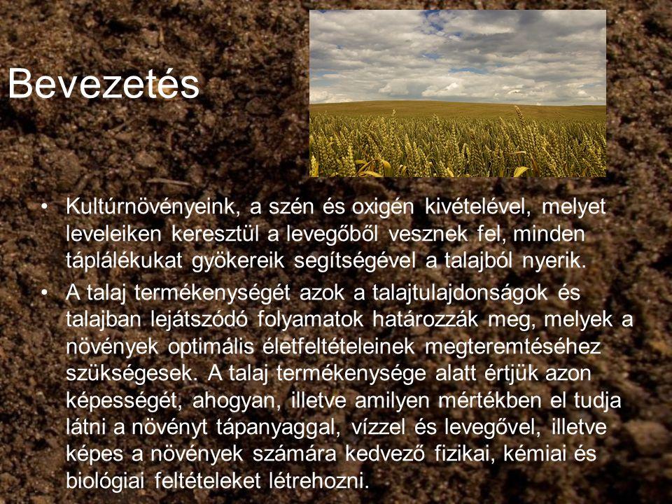 Bevezetés Kultúrnövényeink, a szén és oxigén kivételével, melyet leveleiken keresztül a levegőből vesznek fel, minden táplálékukat gyökereik segítségé