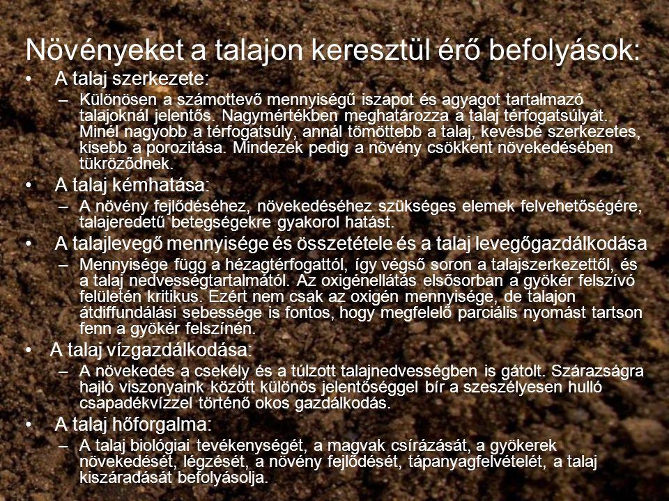 Növényeket a talajon keresztül érő befolyások: A talaj szerkezete: –Különösen a számottevő mennyiségű iszapot és agyagot tartalmazó talajoknál jelentő